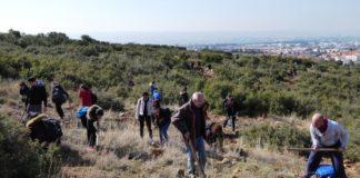 Εκατοντάδες δέντρα φύτεψαν εθελοντές φοιτητές στο Τριάδι