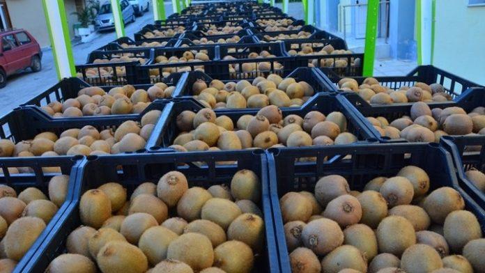 Καθορίστηκαν αγορές-στόχοι για δεκατρία αγροτικά προϊόντα