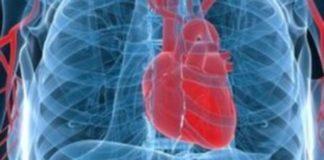 Τεχνητή νοημοσύνη και ψηφιακή τεχνολογία στο τομέα της καρδιολογίας