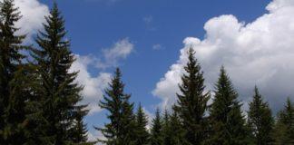 Πόλη – Ανάποδα για το ν/σ Περιβάλλοντος: «Απόσυρέ το!»