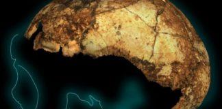 Νότια Αφρική: Βρέθηκε το αρχαιότερο στον κόσμο κρανίο Homo erectus