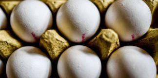 Παράνομη εισαγωγή και ελληνοποίηση αβγών από Βουλγαρία, τζίρου πολλών εκατ. ευρώ, ελέγχει το ΣΔΟΕ