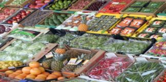 Προϊόντα στις βιολογικές αγορές από το χωράφι στους πάγκους, με μεταφορική εταιρεία, προτείνουν οι παραγωγοί