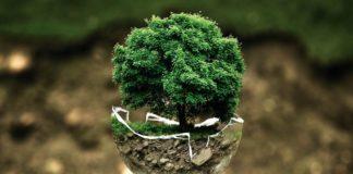 Planet Of The Humans: Το ντοκιμαντέρ του Μάικλ Μουρ για το περιβάλλον