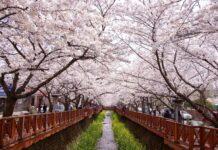 Ιαπωνία: Διακοπές με «κρατική επιδότηση»