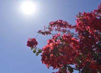 Καιρός: Αυξάνεται η θερμοκρασία από αύριο Πέμπτη (4/6)