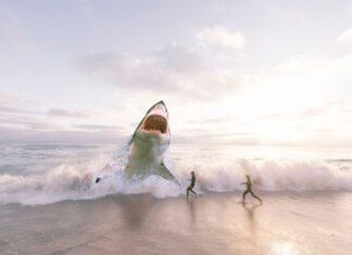 Αυστραλία: Καρχαρίας επιτέθηκε σε σέρφερ και τον σκότωσε